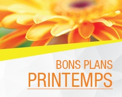 Bons plans printemps 2019 MINI